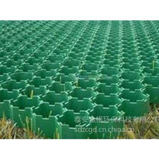供应泉州厂家:植草格,塑料植草格,植草板