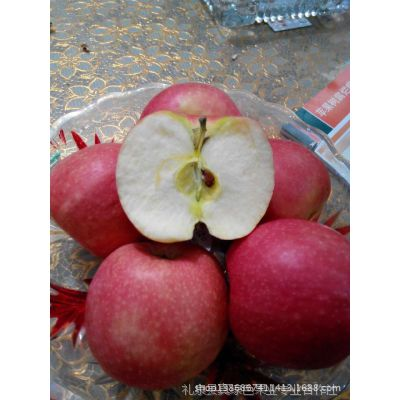 陕西苹果独领风骚 批发红富士苹果(10斤一箱),红富士苹果价格
