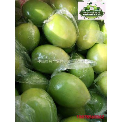 蜜丝枣鲜果 大青枣鲜果 大枣鲜果 特级鲜果 8斤礼品盒包装