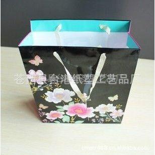 优质供应 环保纸袋 服装购物纸袋 纸质手提袋