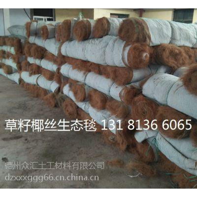 江西植物纤维毯 赣州椰丝毯矿山绿化防护 植物纤维毯 植草毯
