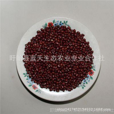 现货红小豆  五谷杂粮批发 杂粮厂家 豆类杂粮