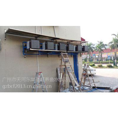 广州哪里安装制冷机,广州制冷设备安装调试公司,哪里安装海鲜制冷鱼池冷水机调试,广州鱼池机制冷设备