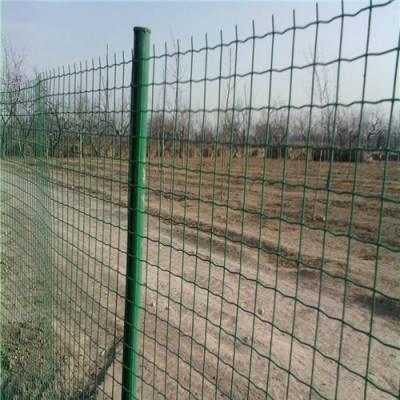 供应果园防盗围栏网@围山散养土鸡防护铁丝网@围栏铁丝网的价格