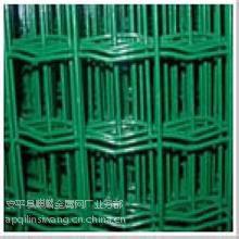 供应南京浸塑荷兰网批发/浸塑电焊网规格