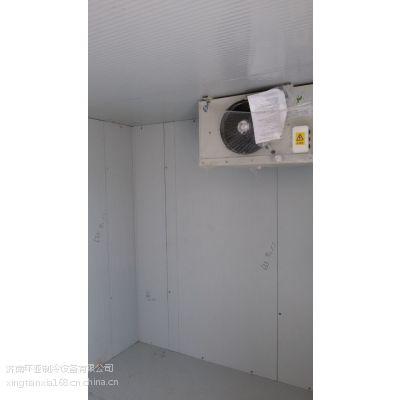 泰安小型医药试剂冷库安装 泰安药品疫苗冷藏库建设 肥城冷藏冷库安装