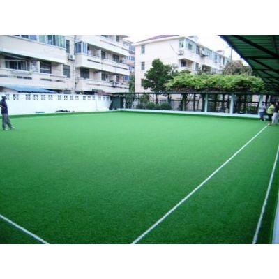 供应上海、江苏、浙江、人造草坪、人工草皮 门球场工程、铺设施工厂家