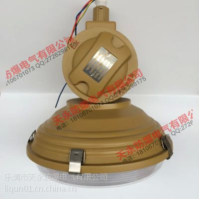 成都SBD1101-YQL50A免维护节能防爆灯管吊式防爆无极灯