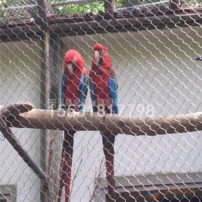 呈吉动物园防护网,珍贵鸟天网,动物园天网,吊桥杂技防护,不锈钢绳网