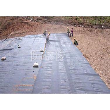 供应垃圾填埋场专用短丝土工布;长丝土工布;土工合成材料