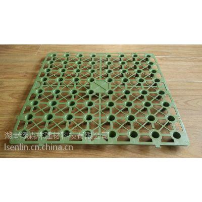 绿森林 长沙排水板、蓄排水板、塑料蓄排水板 500×500×25㎜