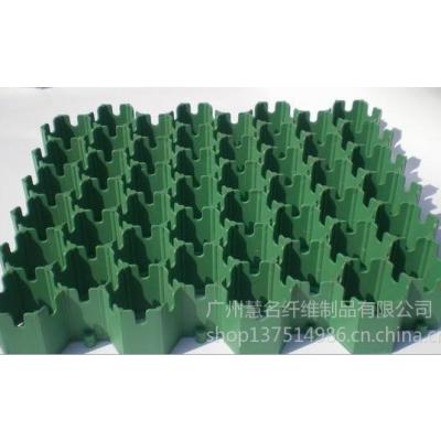 供应厂家 专业生产 植草格 质量保证