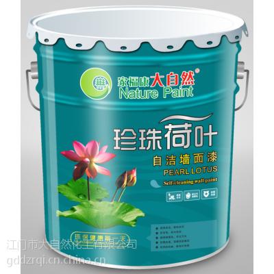 供应大自然珍珠荷叶自洁墙面漆 中国十大品牌油漆涂料