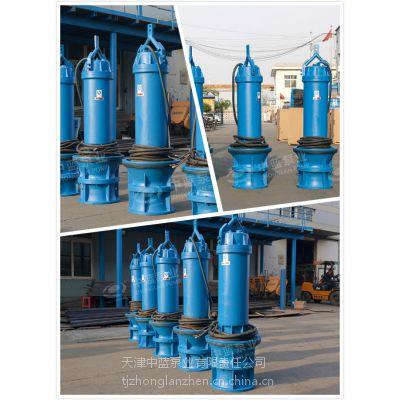 天津中蓝大型潜水轴流泵厂家