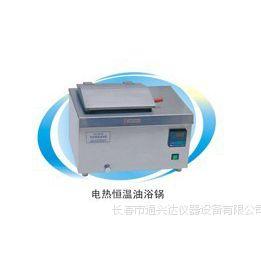 DU-20电热恒温油浴锅     上海一恒