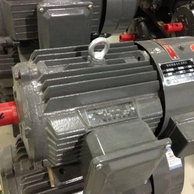 上海德东电机厂 西北办事处 YVF2-802-4 0.75KW 变频调速电机