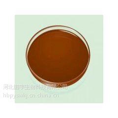 食品级巧克力棕色素生产厂家