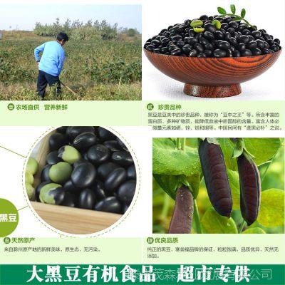 优质豆类食品 批发营养黑豆五谷杂粮黑皮绿心豆类黑龙江豆子