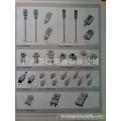 专业代理国内知名防爆电器厂家产品-防爆镇流器BdH-N250