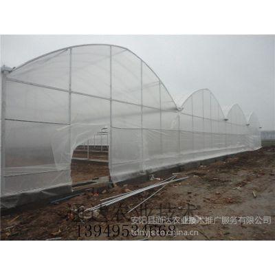 供应武汉塑料大棚制作方案南京蔬菜大棚施工技术