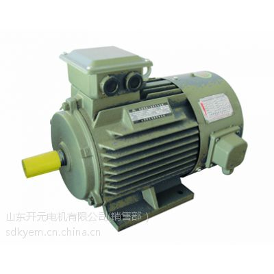 供应YVF系列变频调速三相异步电动机