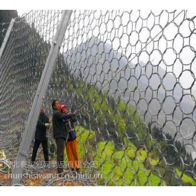 春实供应边坡防护网@绵阳高强度防护网@绵阳柔性防护网厂