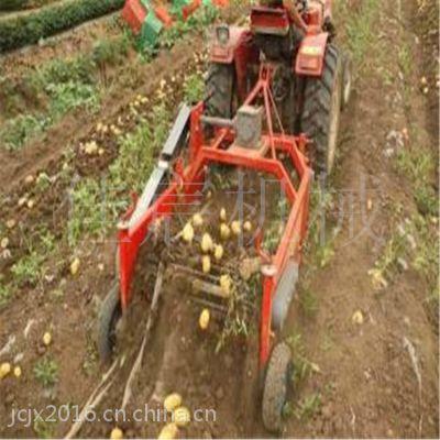 大蒜收获机 热销洋葱挖掘机 拖拉机马铃薯采挖设备佳宸品牌