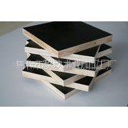 供应焦作市玖玖木业建筑模板厂家在哪里?