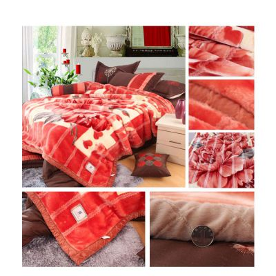 供应供应春涤纶毛毯拉舍尔毯法兰绒毯珊瑚绒毯