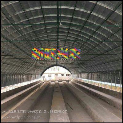 新旺兴农养殖大棚7403种植大棚建设