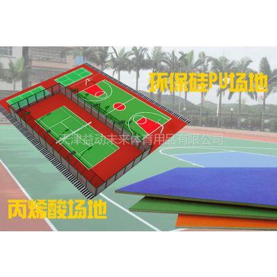 供应天津篮球场地画线羽毛球场地画线篮球架配件大全
