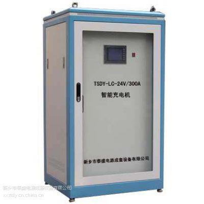 泰盛TSDY-24VAGV全自动搬运机器人智能充电机