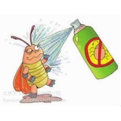 石景山家庭灭蟑螂、天下无虫、家庭灭蟑螂 公司