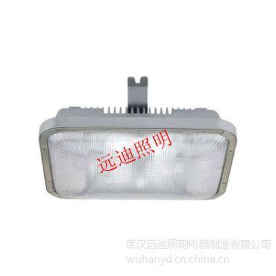 供应国际技术DNFC9175长寿无极顶灯移动照明灯,固定照明灯,施工照明灯,月球灯