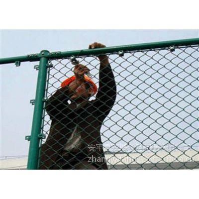 双晟厂家直销清远组装4米*3米网球场围网供应商