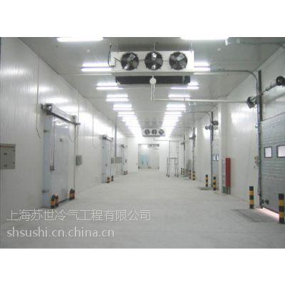 供应上海苏世蔬菜水果保鲜库 农贸冷库