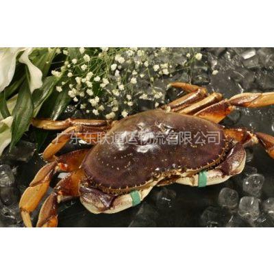 供应广州海鲜进口,海鲜进口清关,专业鲜活海鲜清关公司
