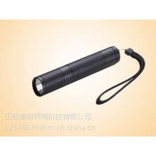 JW5301 微型防爆电筒