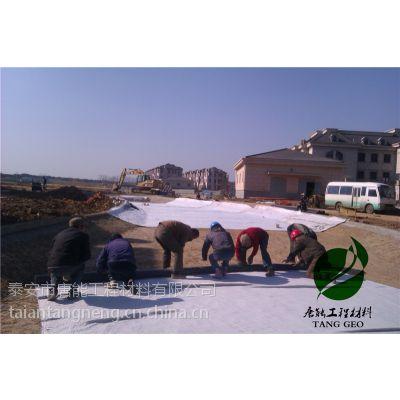衡水垃圾填埋场专用膨润土防水毯批发价格