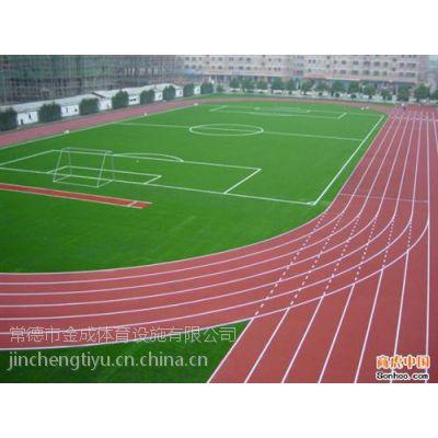 常德市金成体育_常德环保塑胶跑道_常德环保塑胶跑道厂家
