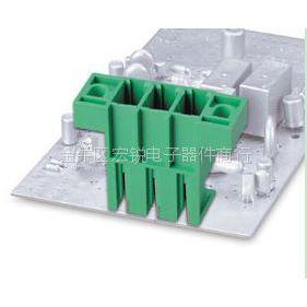 供应台湾町洋接线端子插拔式单层插座ECH762VTM量大从优