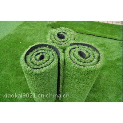 北京哪里有卖足球场草坪的供应球场专用草坪
