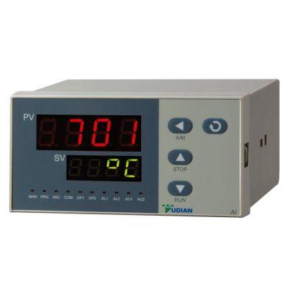 供应工业炉显示表|工业炉温度显示表|数显表|温度显示仪表