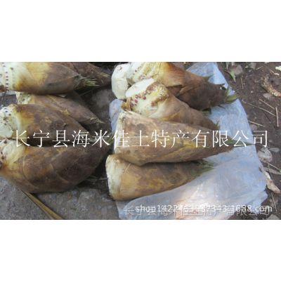 四川土特产长寿蔬菜冬笋尖 蜀南竹海原生态楠竹笋干笋 农副产品