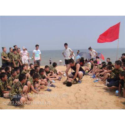 游学夏令营机构推荐、荆州夏令营机构、森众教育(在线咨询)