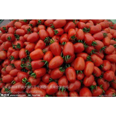 供应主营:西瓜、长豆角、黄瓜、圣女果、西葫芦、韭菜、扁芸豆、无丝豆、茄子、菜角、冬瓜!