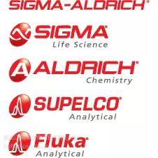 Sigma 标签抗体