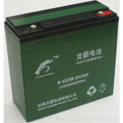 供应惠州深圳厂家批量促销绿源电动车电池12V龙霸电瓶48V免维护蓄电池