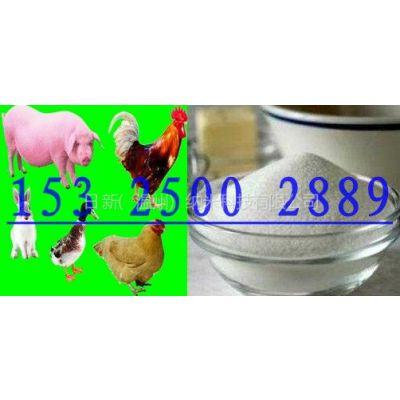 供应牛羊诱食促生长营养剂