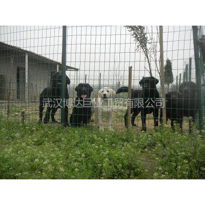 供应随州养殖荷兰网/咸宁园林围栏铁丝网